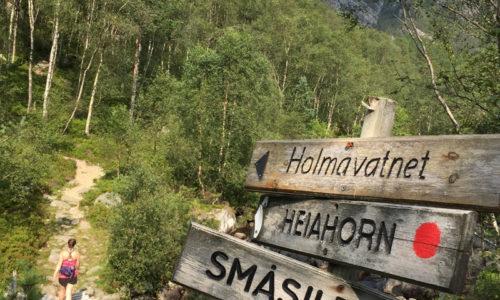 Heiahorn